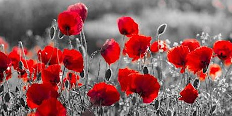 Remembrance Service to include 2 minutes silence tickets