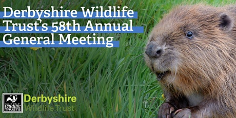 Derbyshire Wildlife Trust's  58th Annual General Meeting tickets
