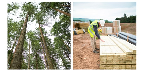 Serious about Green?  Welsh Forests and the Foundational Economy tickets