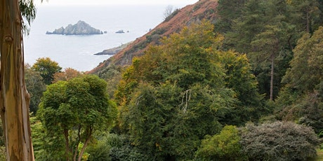 Timed entry to Coleton Fishacre (26 Oct - 1 Nov) tickets