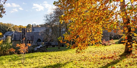 Timed entry to Cotehele (26 Oct - 1 Nov) tickets