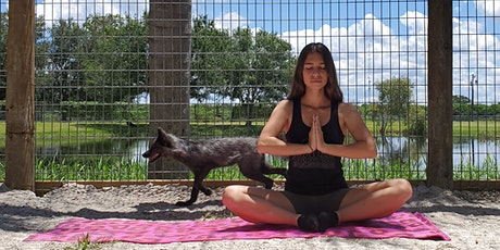 Fox Yoga tickets