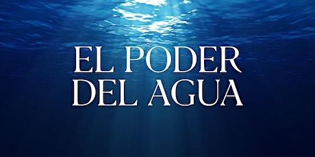 Seminario El Poder del Agua | Inicia: 9.Nov.20 | 9.00PM entradas