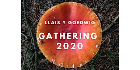 Llais y Goedwig Gathering 2020 tickets