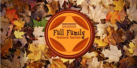 UTRCA Fall Family Nature Series - Shelter Building tickets
