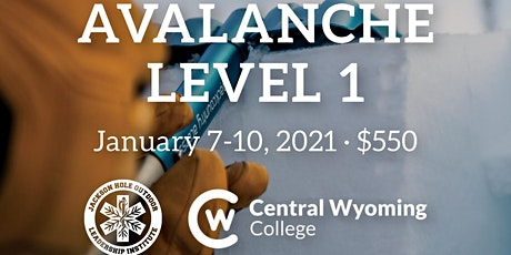 Level 1 Avalanche Course tickets