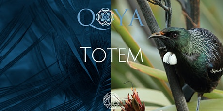 We Dance - Qoya Totem tickets