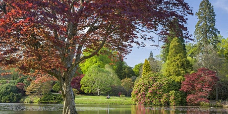 Timed entry to Sheffield Park and Garden (26 Oct - 1 Nov) tickets