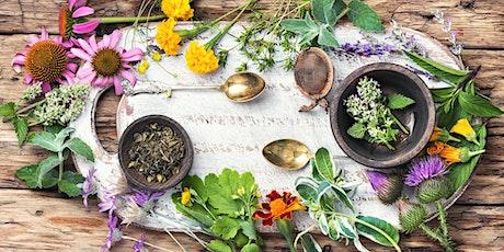 Everyday Herbalism Workshop tickets