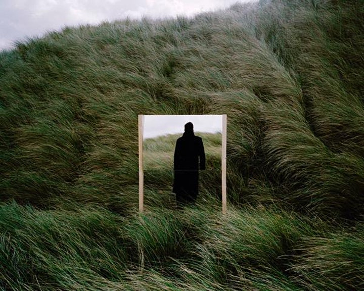 Afbeelding van In order of disappearance by Bart van de Woestijne
