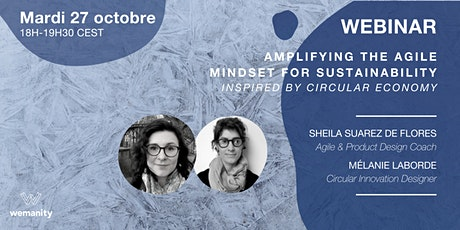 Amplifying the Agile Mindset for Sustainability with Circular Economy Tickets