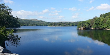 Pi Singles - Burrator Reservoir Walk tickets