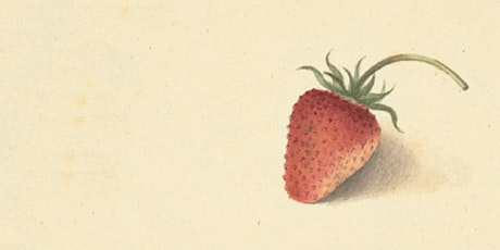 SUISS Presents: *Seven New Strawberries* Book Launch! tickets