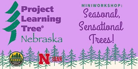 Project Learning Tree MiniWorkshop: Seasonal, Sensational Trees! tickets