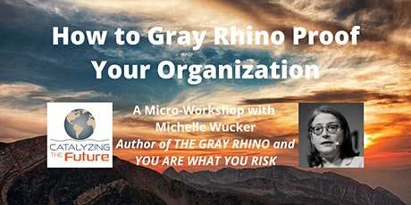 How to Gray Rhino Proof Your Organization tickets