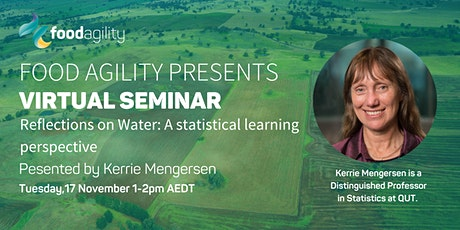 VIRTUAL SEMINAR: Reflections on Water: A statistical learning perspective tickets