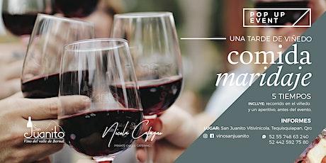 Una tarde de viñedo, Comida Maridaje 5 tiempos entradas