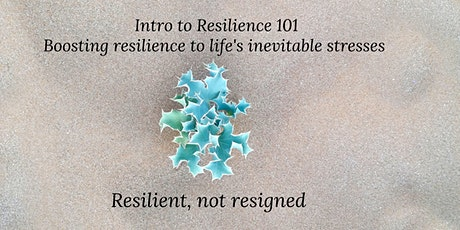 Intro to Resilience 101 tickets