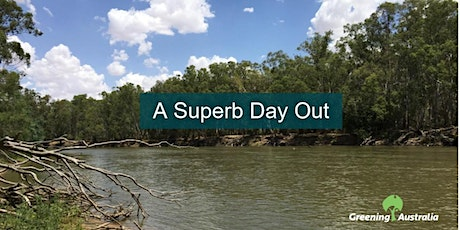 A Superb Day Out – annual count of Superb Parrots tickets