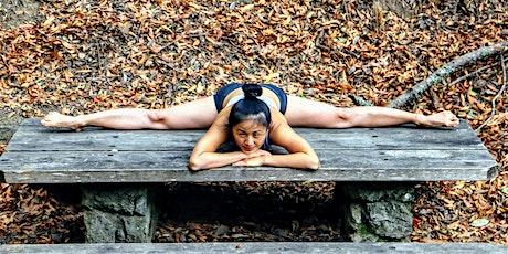60 Minutes Free Online Virtual Vinyasa Yoga (Advanced) with Serena Xu tickets