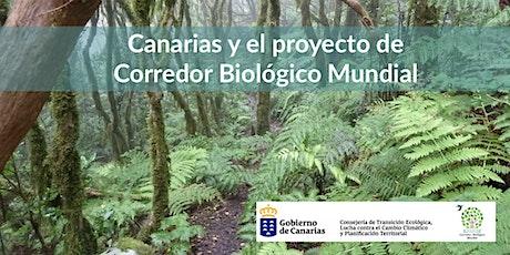 Canarias y el proyecto de Corredor Biológico Mundial entradas