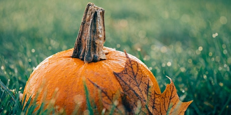 Caedmon School: Fall Festival and Story Time!! (ages 1-6) tickets