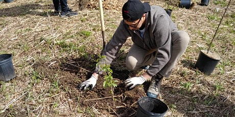 Native Tree and Shrub Planting at Cold Creek Conservation Area Wetland tickets