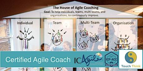 Agile Team Coach (ICP-ACC) (London, March 2021)