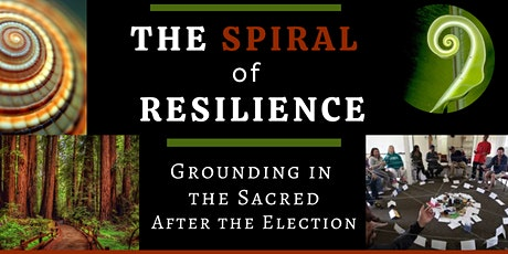 The Spiral of Resilience: Grounding in the Sacred after the Election tickets