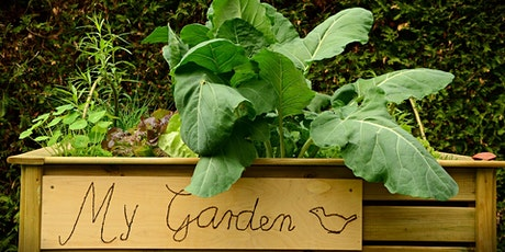 Edible Gardening Series: Hot season veggies, Topic 20 of 20 (webinar) tickets