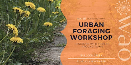 Urban Foraging Workshop - Discover Wild Edibles Around Town tickets