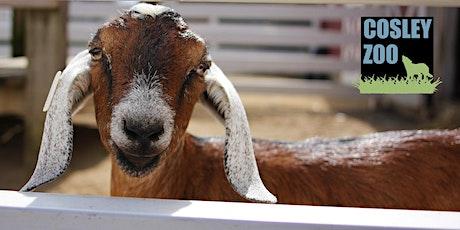 Cosley Zoo Admission -Tuesday, November 3, 2020 tickets