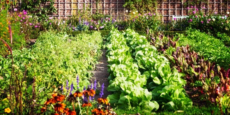 Sustainable Food Systems & Summer Gardens tickets