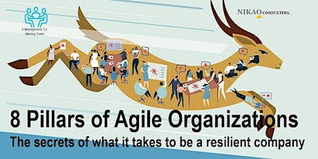 8 Pillars of Agile Organizations tickets