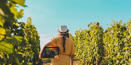 VIRTUAL HAPPY HOUR: FEMALE WINE MAKERS! tickets