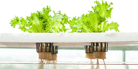 Set it and Forget it Hydroponics Workshop tickets