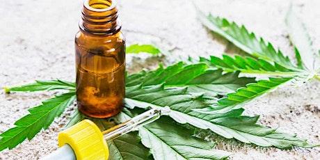 Cannabinoids Explained  - webinar tickets