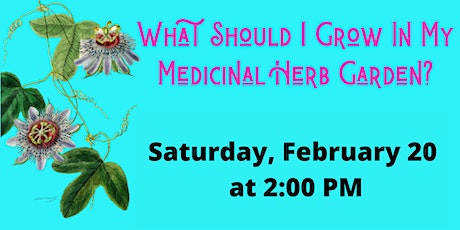 What Should I Grow in My Medicinal Herb Garden? tickets