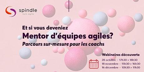 Webinaire : Devenez mentor d'équipes agiles (Spécialisation pour coachs) billets