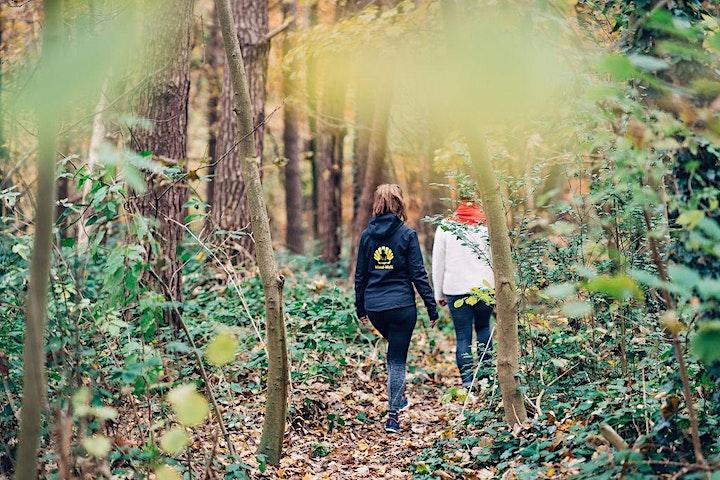 Afbeelding van Mind-Walk® Herfsteditie start 31 oktober 2020