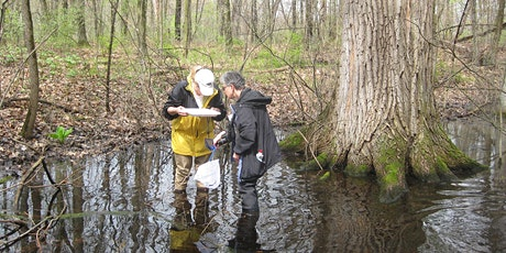 Michigan Vernal Pools Partnership Annual Meeting tickets