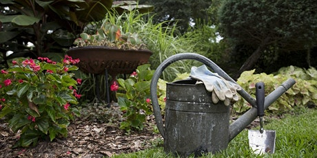 Gardening & Landscaping in 15 minutes: A Webinar Series! (11/3-11/24) tickets