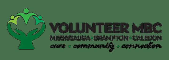 VLPN November Forum: Virtual Volunteering image