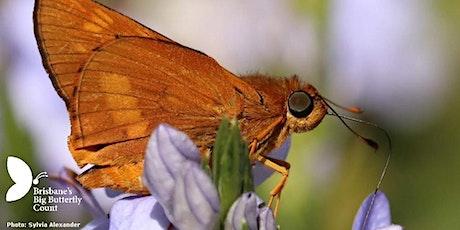 Butterfly Ecology Walk tickets