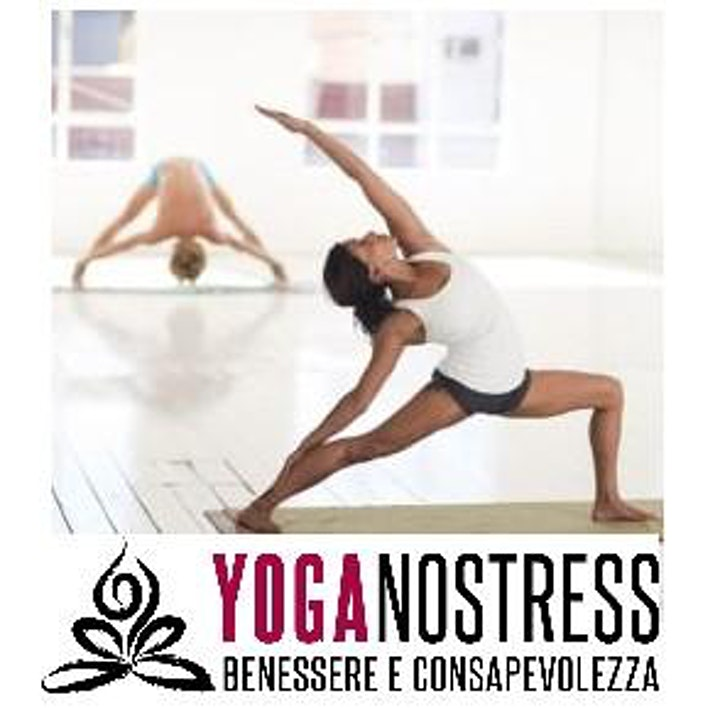 Immagine Copia di Vinyasa Yoga Roma