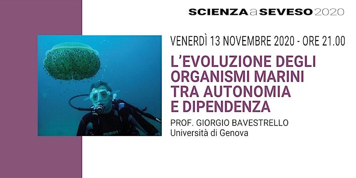Immagine Scienza a Seveso 2020: ESSERE VIVENTI - Conferenze online