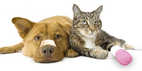 Virtual - Certified Pet Sitter/CPR/First Aid (add on) 7-11-21 8 PM to 9 PM tickets