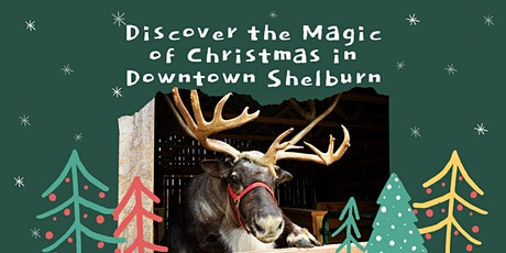 1st Annual Discover the Magic of Christmas in Downtown Shelburn tickets
