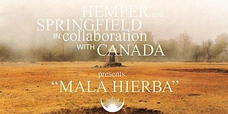 El documental sobre la primera colección de Springfield by Hemper entradas