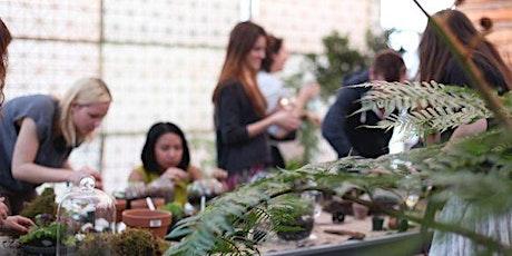 Holiday Workshop: Makeal Terrarium tickets